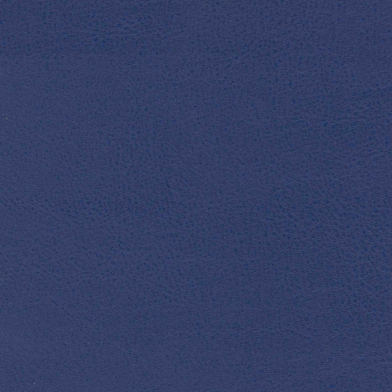 Locker Room Royal High Performance Vinyl Furniture Upholstery Fabric